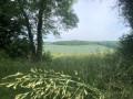 Dans les collines de Bray-et-Lû