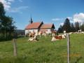 Chapelle de Montpetot et Roche Sarrasine