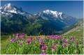 Col des Montets - 1440m