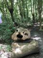 Balade en forêt d'Eschau - Parcours -1-