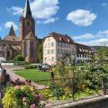 Circuit découverte de la ville de Wissembourg et son vignoble