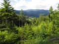 Dans la Forêt Noire autour de Sallneck