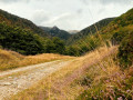 Le Hohneck par la vallée de la Wormsa