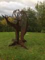 Verson, le baobab et le pommier