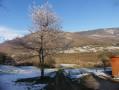 Le long de la Valserine au départ du Pont des Pierres