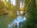 Promenade dans l'ancien lit du Rhin 2 : du Pont-levis à la Ferme du Moulin