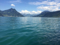 Le long du Lac des Quatre Cantons